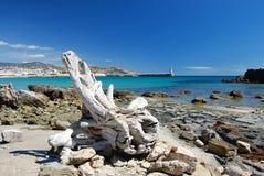 Spanish coast, Tarifa. White piece of wood on the beach in Tarifa, Spain Stock Image