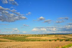 Spanish country landscape in spring Stock Photo