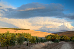 Spanish country landscape at sunset stock images