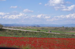 Spanish countryside. With blossoming poppies Royalty Free Stock Images