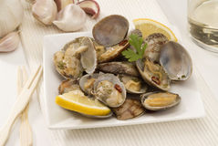 Spanish Cuisine. Clams fisherman's style. Royalty Free Stock Images