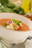 Spanish Cuisine. Gazpacho. Andalusian cold soup. Stock Images