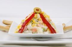 Spanish Cuisine. Russian salad. Ensaladilla rusa. Stock Images