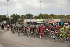 Spanish cycling tour  La Vuelta Royalty Free Stock Photos