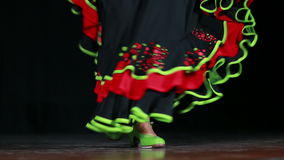 Spanish Dance 06 Royalty Free Stock Photography