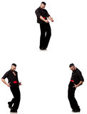 The spanish dancer in various poses on white Royalty Free Stock Photo