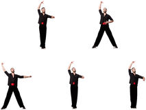 The spanish dancer in various poses on white Stock Photo