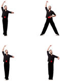 The spanish dancer in various poses on white Royalty Free Stock Photography