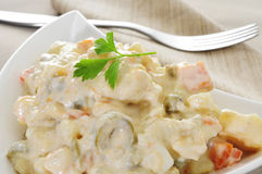 Spanish ensaladilla rusa, russian salad. Closeup of a plate with a typical spanish ensaladilla rusa, russian salad Royalty Free Stock Images