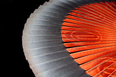 Spanish Fan. Wooden fan from Spain with stylized flower design royalty free stock photo