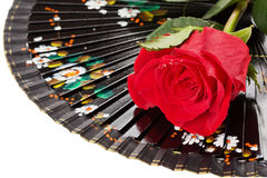 Spanish fan and rose isolated Stock Photo
