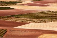 Spanish fields Stock Photo
