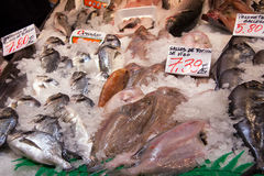 Spanish fishmonger stall, a variety of fresh fish Stock Photo