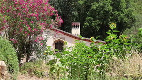 Spanish garden with a house stock footage