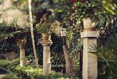 Spanish garden. In summer with trees and flowers Royalty Free Stock Images