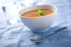 Spanish gazpacho Royalty Free Stock Images