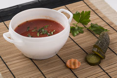 Spanish Gazpacho soup on the plate decorated with dill, cucumber Royalty Free Stock Images