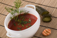 Spanish Gazpacho soup on the plate decorated with dill, cucumber Stock Images