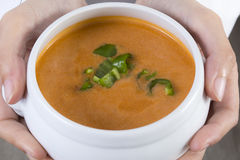 Spanish Gazpacho Stock Images