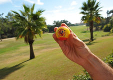 Spanish golf ball in hand, golf in Spain Stock Image