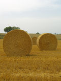 Spanish hay Stock Photo
