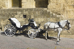 Spanish horse carriage Stock Images