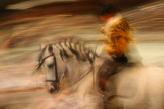 Spanish Horse riding. Spanish Andalusian Horse in motion with rider. Haute ecole