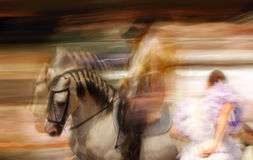 Spanish Horse riding. Spanish Andalusian Horse in motion with rider. Haute ecole Royalty Free Stock Images
