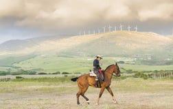 A spanish horseman Stock Photos