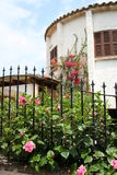 Spanish house with flowers. A spanish house with a garden in the front Royalty Free Stock Images