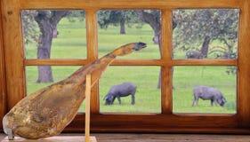 Spanish iberian ham. Stock Photo