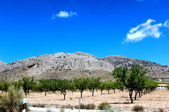 Spanish landscape Royalty Free Stock Photo
