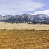 Spanish landscape in the morning Royalty Free Stock Photo