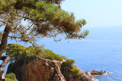 Spanish landscape with sea and rocks Royalty Free Stock Image