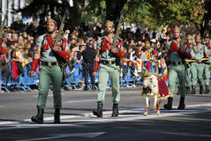 Spanish Legionarios marching with their pet. Spanish Legionarios with their pet marching on a military parade. Day of Hispanity, 2010 royalty free stock images
