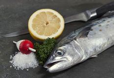 Spanish mackerel, salt,lemon and parsley ready for Royalty Free Stock Image