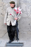 Spanish man sale red roses in Madrid Spain. MADRID - MARCH 02:Spanish man sale red roses flowers in Plaza del Sol (Puerta del Sol) in Madrid, Spain.The Puerta Stock Image