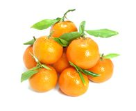 Spanish Mandarins Royalty Free Stock Image