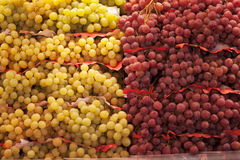 Spanish Market grapes Stock Images
