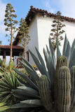 Spanish Mission With Cactus. A close up of several of the varieties of southwestern plants that grow near Mission San Luis Rey in California Stock Photo