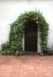 Spanish Mission Style Door With Ivy Background for Portraits Stock Photo