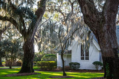 Spanish Moss Around White Church Stock Photography