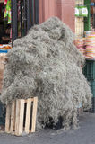 Spanish moss for sale Stock Photo