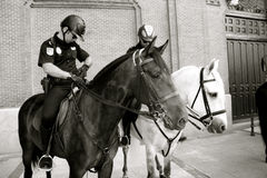 Spanish Mounted Police Patrol Madrid. Black and white Photo of two Police horses of the Spanish national police getting ready to control the crowds outside the Stock Photography