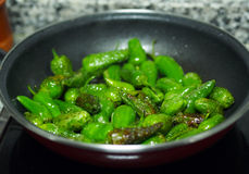 Spanish national food - fried green Padron peppers Royalty Free Stock Images