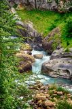 Alpine rill and mountaine forest in the National Park of Ordesa. Spanish National Park of Ordesa in the Pyrenees in a zone of rills and runlets between cliffs Royalty Free Stock Image