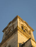 Spanish oranges and Bell Tower Stock Images
