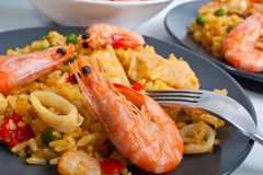 Spanish paella. On a dark plate on light background with king shrimps Stock Photos