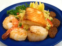Spanish Paella Dish royalty free stock photos
