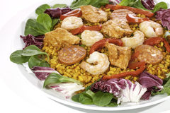 Spanish paella meal served cold with salad Royalty Free Stock Photography